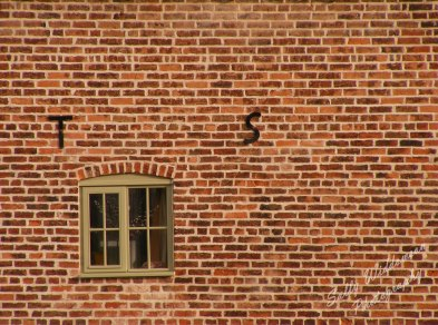 red brick wall with green framed window and letters T and S