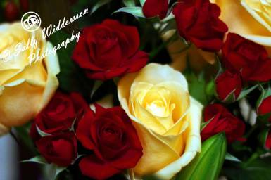 Miniature red roses large cream ivory rose bouquet lily bud lilly